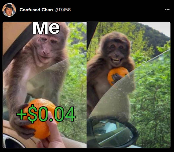 Happy monkey after receiving 4 cents
